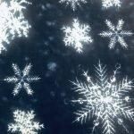 Large Snowflakes
